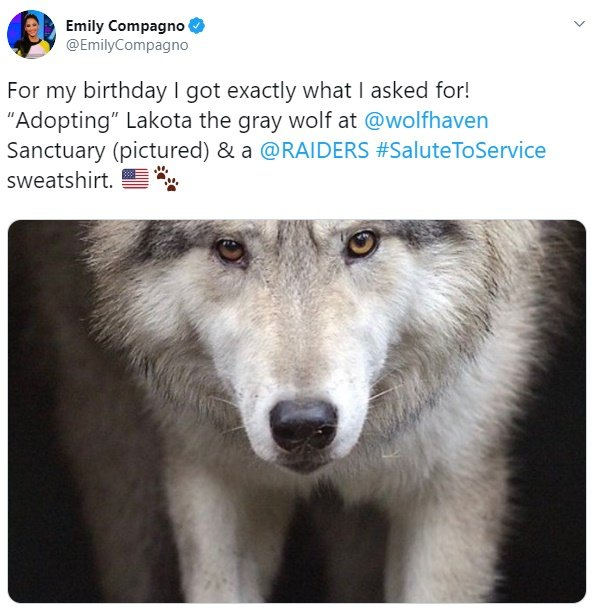 emily parents adopted wolf for her